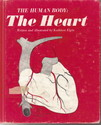 Human Body The Heart