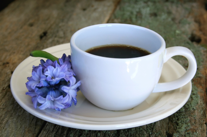 coffee_hyacinth