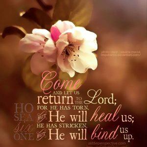 Hosea 6:1