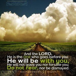Deuteronomy 31:8 | Scripture Pictures | www.alittleperspective.com