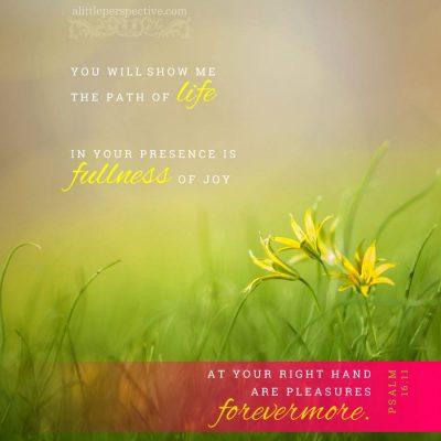 The Garment of Praise for the Spirit of Heaviness