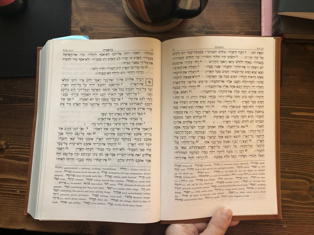 Genesis 8-9 in my Hebrew Bible