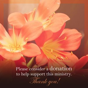 Click to donate to the ministry of Christine Miller.